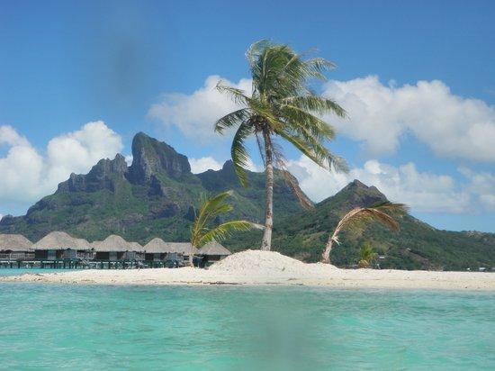 Island off the beach - Courtesy of media-cdn.tripadvisor.com