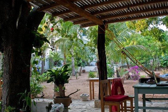 Villa Mozart y Macondo: Jardin Macondo
