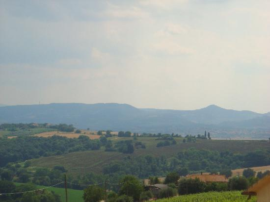 Locanda Anice Stellato : View from the dining terrace