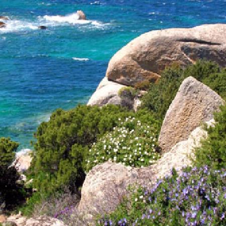 Agriturismo Canu : Beach Lu Litarroni - 25 minutes drive