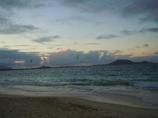 Kailua Beach Park : All the Windsurfers at Kailua