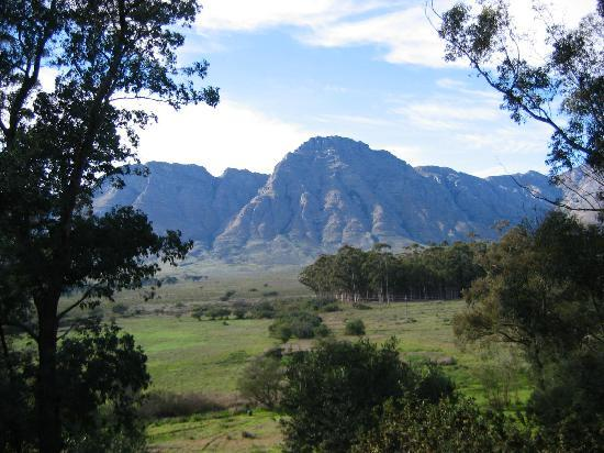 Bartholomeus Klip Farmhouse: The view from the Orchid Suite
