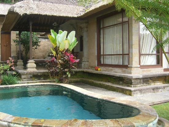 privater pool im garten - picture of pita maha resort and spa, Garten und Bauen