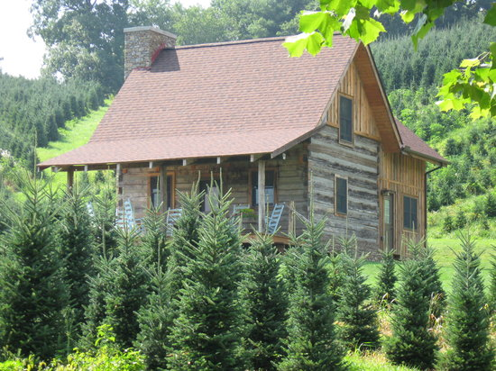 Boyd Mountain Log Cabins : Clinch Valley Cabin at Boyd Mountain