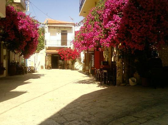 Skaleta, Grecia: jolies fleurs
