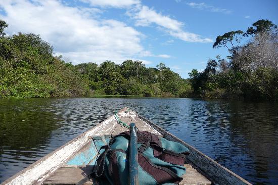 Amazon Gero Tours: balade en bateau