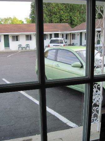 The Cedars Motel: looking out the lobby window