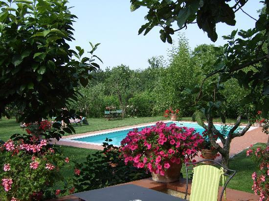 Casolare di Libbiano: Looking down towards the pool