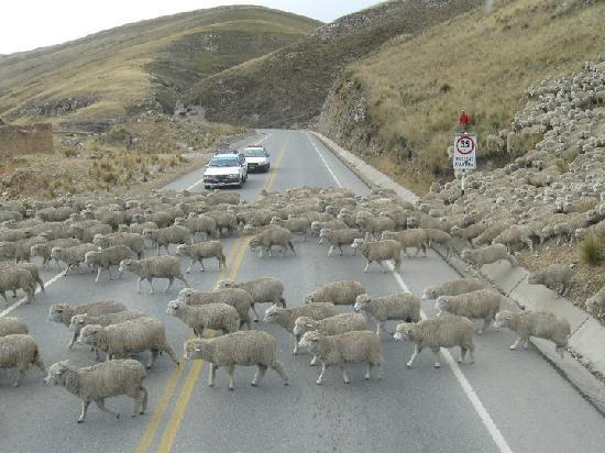 Tarma, Perú: some road blocks along the way