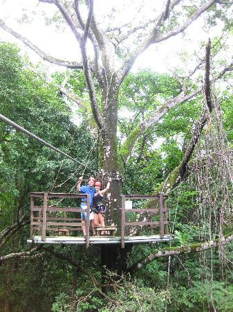 """Oxygen Jungle Villas: In the """"treehouse"""" on our canopy tour at Hacienda Baru"""