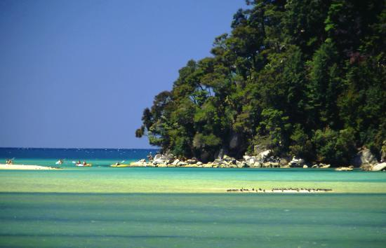 Kayakers, Abel Tasman National Park, Nelson New Zealand