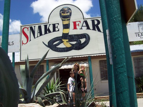 New Braunfels, TX: In front of the Snake Farm