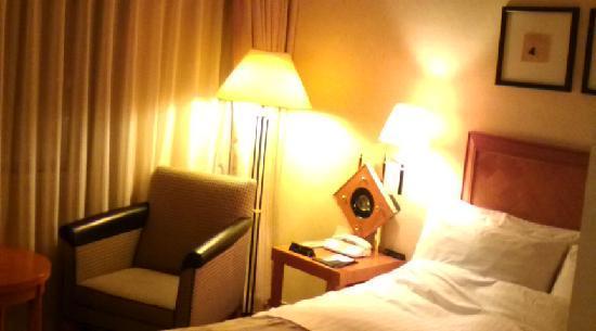 Hotel Nikko Kochi Asahi Royal: コンフォートシングル
