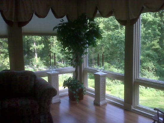 Blair Mountain Bed & Breakfast: View from the Common Room!