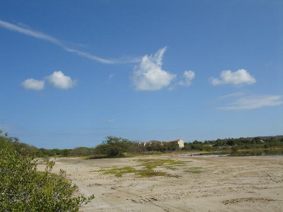 Parador Combate Beach : The Nature Preserve-the Hotel is behind the buildings you see in the back