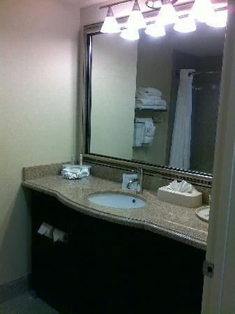 ฮอลิเดย์อินน์เอ็กซ์เพลส โฮเต็ล & สวีทส์ ออร์แลนโด อินเตอร์เนชั่นแนลไดร์ฟ: The bathroom