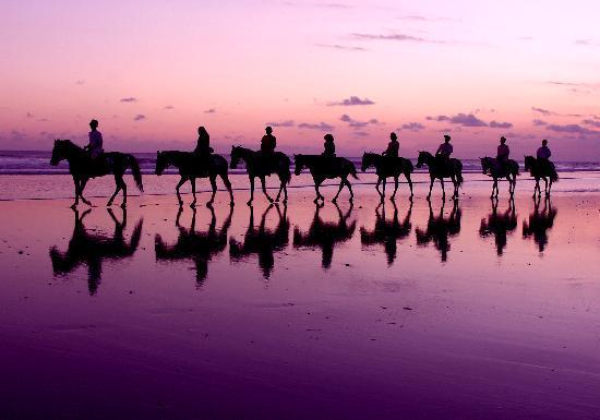 Bali Island Horse: Island Horse - Yeh Gangga Beach Bali