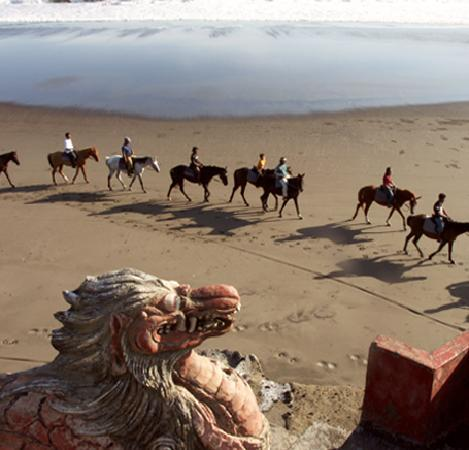 Bali Island Horse: A natural balinese experience with a mystic ride on a seemingless endless sparkling beach.