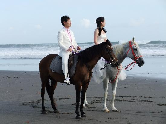 Bali Island Horse: Pre Wedding Photos - We cater for photograph sessions too.