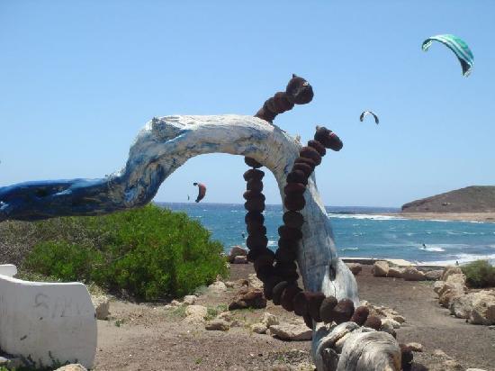 Hotel Playa Sur Tenerife: Lage am Strand