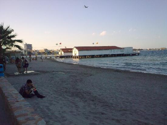 Hotel Costa Narejos: La playa
