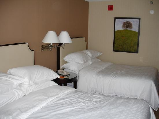 Sheraton College Park North Hotel: Our Room 1