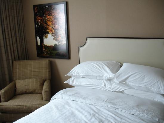 쉐라톤 워싱턴 호텔 노스 사진