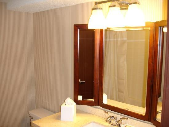 Sheraton College Park North Hotel: Bathroom