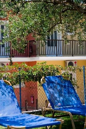 Kaloudis Village Apartments: Kaloudis - sun loungers under the olive trees