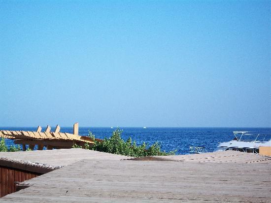 鯊魚灣岸碧潛水渡假村飯店照片