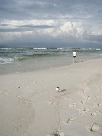 Gulf State Park : on the beach at Gulf Shores State Park