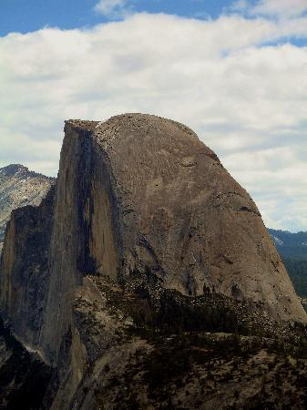 Cedar Lodge: Half Dome