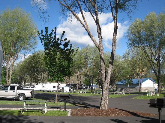 Crook County RV Park, Prineville