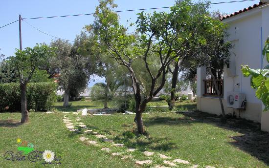 Villa Flora apartments: garden