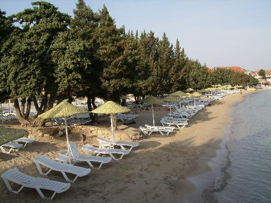 Altin Yunus Resort & Thermal Hotel: Beach