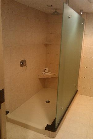 Radisson Hotel Corning : Neat shower