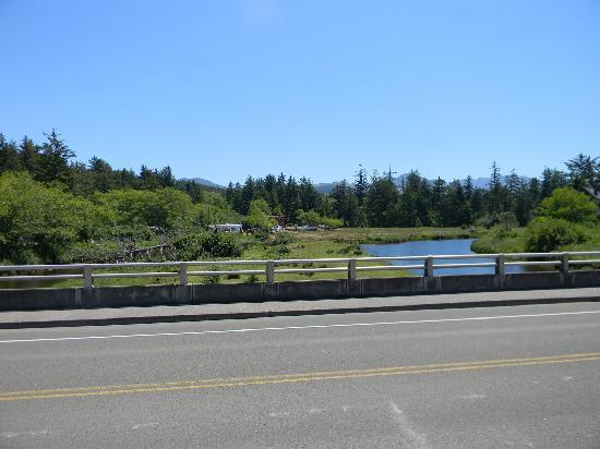 Sea Ranch RV Park & Stables: from road looking back at camp