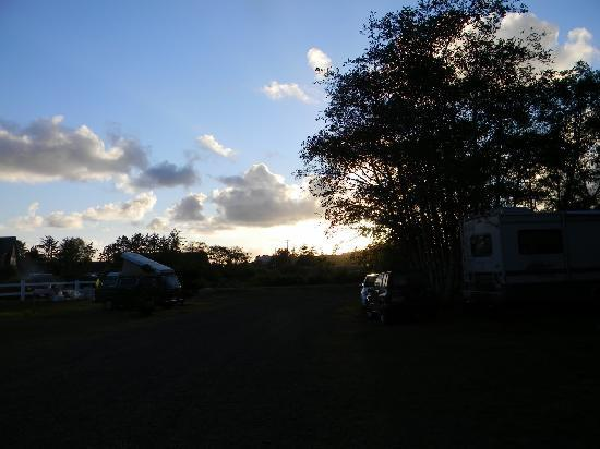 Sea Ranch RV Park & Stables: camp sunset
