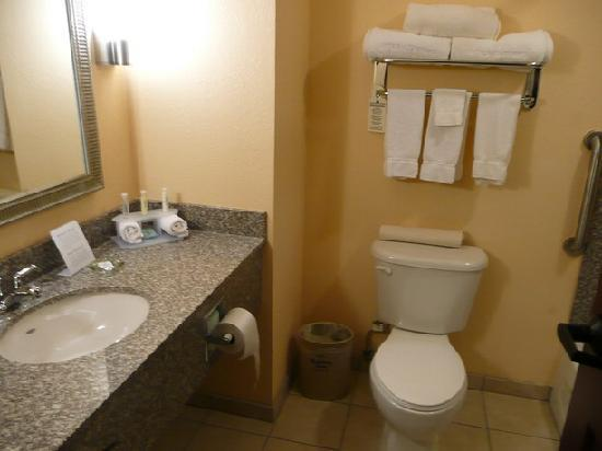 Holiday Inn Express Hotel & Suites Willcox: Bad