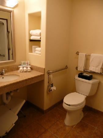 Holiday Inn Express Suites Alamosa: Bad