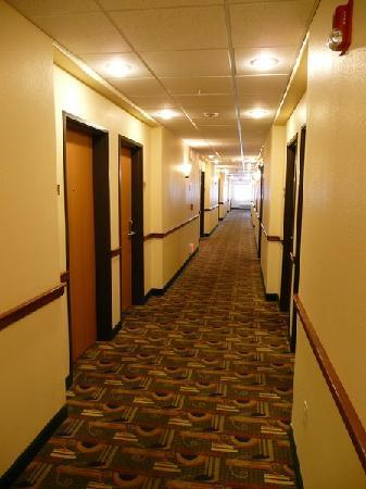 Holiday Inn Express Suites Alamosa: Flur