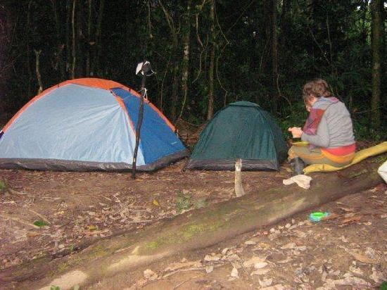 América del Sur: estamos haciendo camping en plena selva