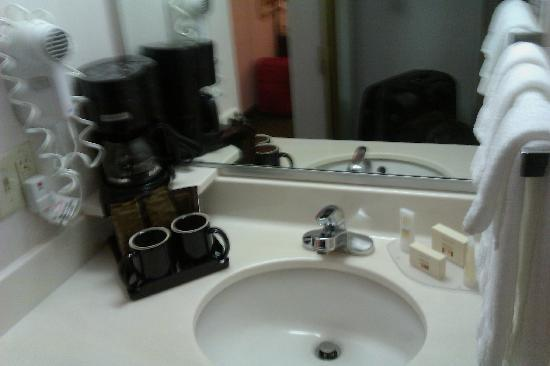 Courtyard Eugene Springfield: Vanity Sink