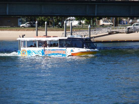 Aquaduck: On the Broadwater