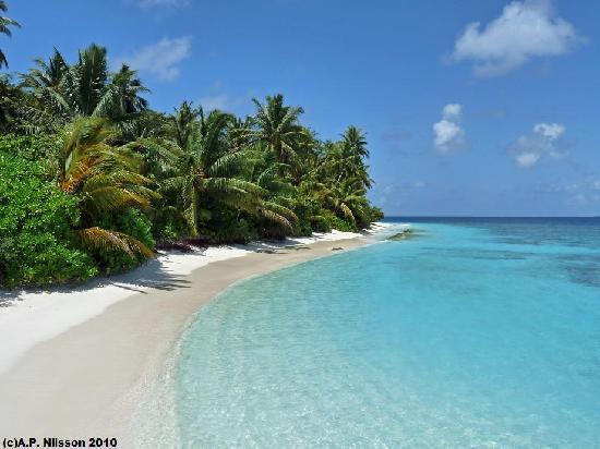 Madoogali Tourist Resort: Madoogali Island beach
