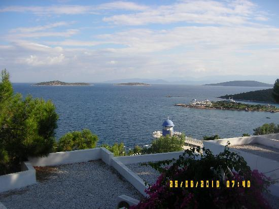 Blue Dreams Resort: the veiw from our room