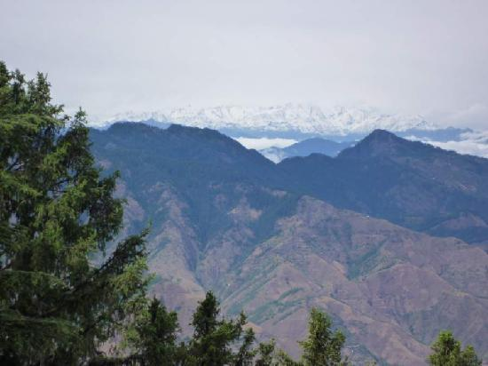 Wildflower Hall, Shimla in the Himalayas : fabulour views from bedroom