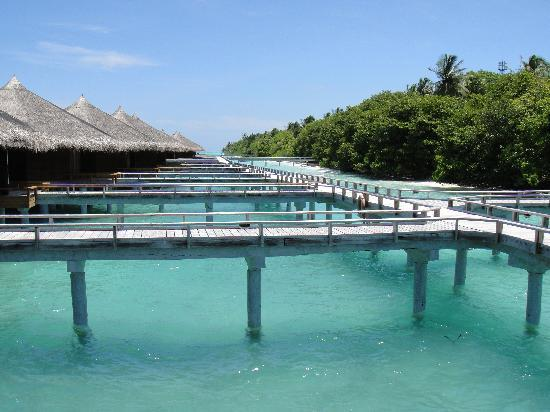 Kuramathi Island Resort: Water villa with jaccuzzi