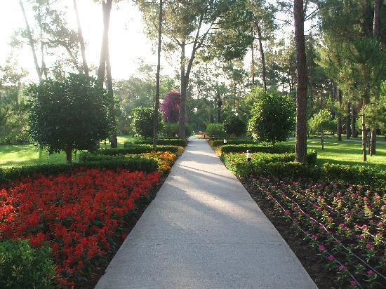 Renaissance Antalya Beach Resort & Spa: Le magnifique parc arboré