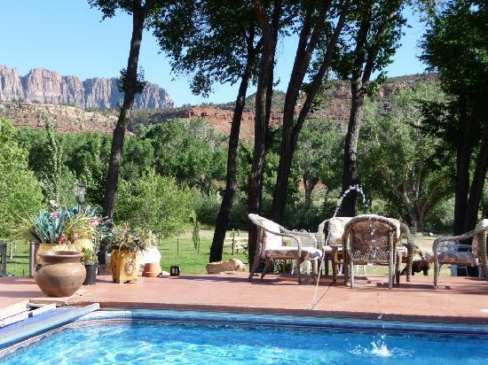 Desert Thistle: Blick vom Pool.